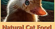 Natural Cat Food Makes For A Healthier Cat