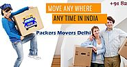 Packers And Movers In Delhi: Instructions To Move The Nation Over With Your Pet: Packers And Movers Delhi