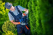 Best Landscaping & Gardeners Services in Seaford