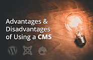 Advantages & Disadvantages of Using a CMS for Building Your Website