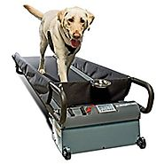 PetZen DogTread Dog Treadmill, Up to 150-Pounds, Large