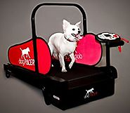 dogPACER Dog Health and Fitness and Exercise Folding Treadmill Full or Mini for Indoor Walking Exercise - Light and S...