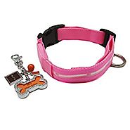 Alfie Pet by Petoga Couture - Kasey LED Flashing Pet Safety Collar with Photo Charm Keychain Set