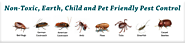Buy Anti-Termite Control Treatment in Gurgaon (Gurugram) by Top Company in Gurgaon. Guaranteed Termite Control. Call ...