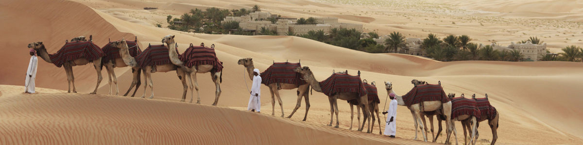 Headline for Sightseeing in Liwa, Abu Dhabi - The Greenest Spots of a Celebrated Oasis