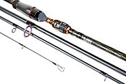 How to Choose Your Fishing Rods : Simple and Straightforward Tips