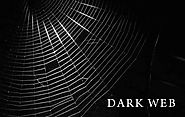 What is the dark web and how do you access it? - Tips & Tricks - TTI Trends