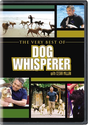 The Very Best of Dog Whisperer with Cesar Millan