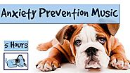 "5 Hours of ""Anxiety Prevention"" Music for Dogs and Pets. Fireworks and Storms - Problem Solved!"