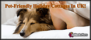 Pet-Friendly Cottages To Spend Wonderful Holidays In UK! | collectoffers.com