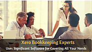 Xero Bookkeeping Expert Uses Significant Software for Covering All Your Needs