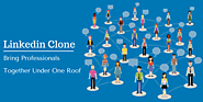 Are You Looking Forward to Getting Your Own Professional Networking Website? - Innovative Website Clone Scripts
