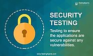 Software Security Testing: Detecting the Defects Early