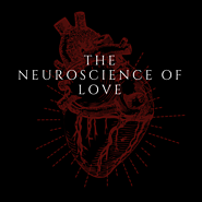 The Neuroscience Of Love - Break Your Illusions