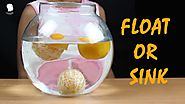 Float or Sink Experiment | Fun Brains