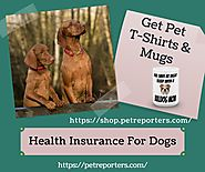 Health Insurance For Dogs