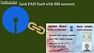 Link PAN Card with SBI account online| Finbucket |