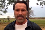 Arnold Schwarzenegger Awesomley Recites Fan-Chosen Lines From His Movies
