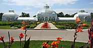 Buffalo and Erie County Botanical Gardens (NY): Top Tips Before You Go - TripAdvisor