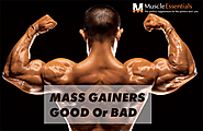 Mass Gainers Good or Bad for Muscle Gain - MuscleEssentials.in