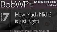 How Much Niche Is Just Right When Monetizing Your WordPress Site?