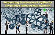 Supporting Processes of Agility By Enterprise Release Management