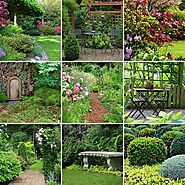 Landscaping Tips: A List of the Best Flowers for Your Home Garden