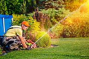 The Most Common Lawn Care Mistakes People Make at Home