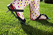 Hire a Lawn Care Service for Aeration When Your Yard Begins Struggling