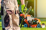 Why You Should Find a Lawn Care Service Offering These Essentials