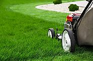 Why You Should Include Lawn Maintenance in Your Landscaping Budget
