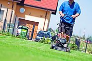 Reasons Why You Should Consider Hiring a Company That Offers Lawn Care Service