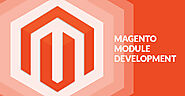 Website at https://www.magentodevelopergroup.com/services/shipping-module-integration.php