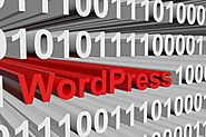 WordPress Website Development from small to large scale industries