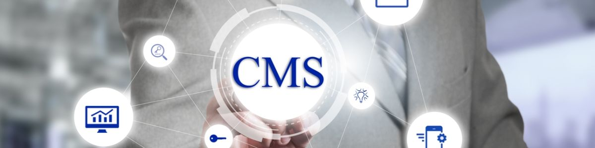 Headline for CMS Web Development in New York