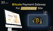 Accept Bitcoin | E-commerce Payment Gateway