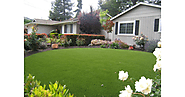Want a Worry-Free Garden? Here's Why Artificial Turf in Your Home Is a Wise Choice