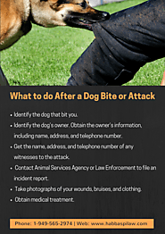 What to do after a Dog Bite or Attack?
