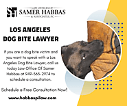 Los Angeles Dog Bite Lawyer - Law Office Of Samer Habbas