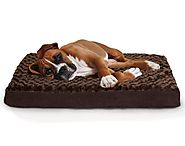 Best Dog Beds 2017 (July. 2017)