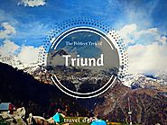 Triund Trek and Camping | Lowest Price @1479