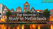 Top 5 Perks of Studying in Netherlands you should know