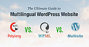 The Ultimate Guide to Multilingual WordPress: WPML VS Polylang VS Multisite - Pojo Blog