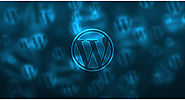 Steps to Optimize WordPress to Reduce Server Load – Antony Agnel