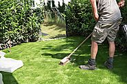 Determining the Ideal Time to Invest in an Artificial Turf Installation in Denver, CO