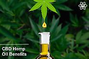 Learn the positive aspects of CBD from Hemp oil