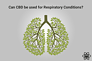 What if CBD can be used for Respiratory Conditions?
