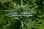 Facts that Prove CBD is the best Medicinal Marijuana