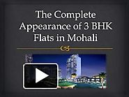 The Complete Appearance of 3 BHK Flats in Mohali