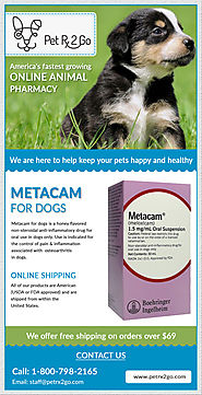 The Goodness of Metacam for Dogs